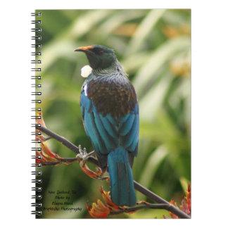 Cuaderno Cuaderno, pájaro de Nueva Zelanda Tui