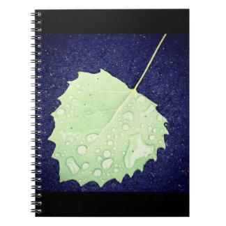 Cuaderno Cuaderno cubierto de rocio de la hoja