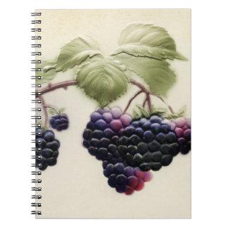 Cuaderno de Blackberry del vintage de Shab-tastic