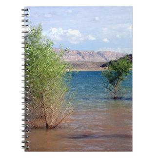 Cuaderno de la cala de las codornices