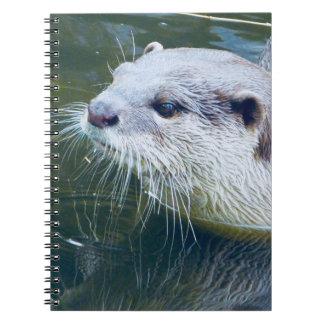 Cuaderno de la nutria