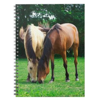 Cuaderno del amor del potro