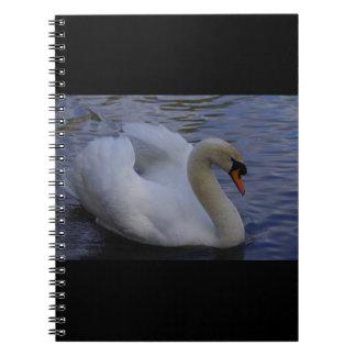 Cuaderno del cisne