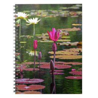 Cuaderno Después de para siempre