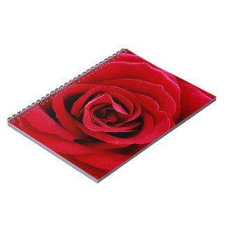 Cuaderno Diario color de rosa