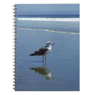 Cuaderno/diario personal - gaviota en la playa libro de apuntes con espiral