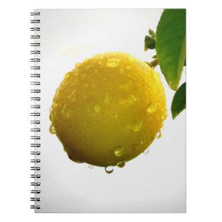Cuaderno/diario personal - limón amarillo libreta espiral