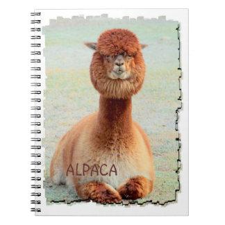 Cuaderno divertido de la alpaca