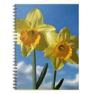 Cuaderno Dos narcisos amarillos 2,2