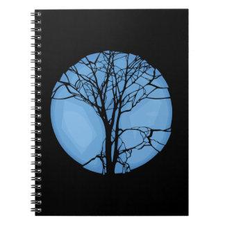 Cuaderno Ecosistema frágil