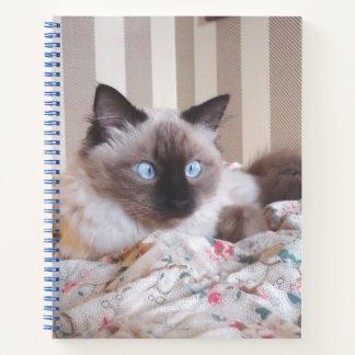 Cuaderno Edith