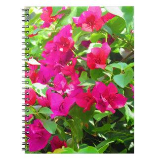 Cuaderno Emblema floral del bougainvillea de la flor del