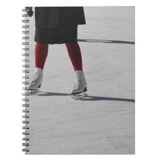 Cuaderno En el hielo