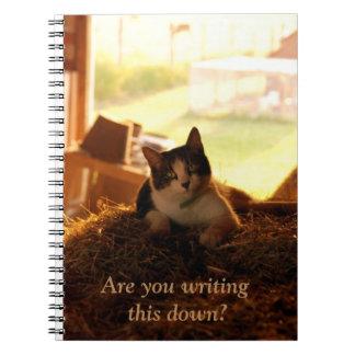 Cuaderno Es usted que escribe esto traga el gato de la