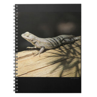Cuaderno espiral del lagarto de cerca occidental