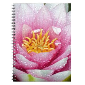 Cuaderno Flor rosada del lirio de agua