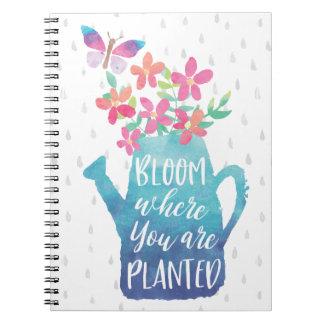 Cuaderno Floración donde le plantan