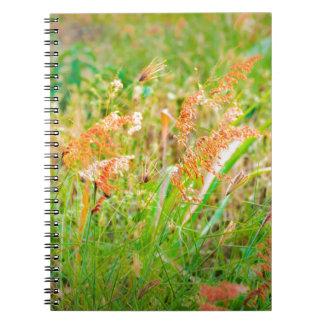 Cuaderno Foto floral de la escena de la tarde