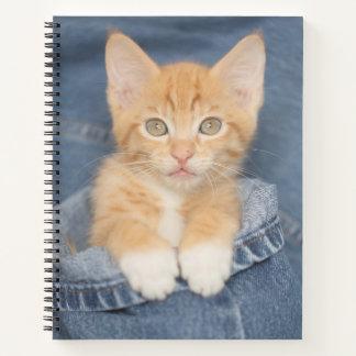 Cuaderno Gatito del bebé de los tejanos