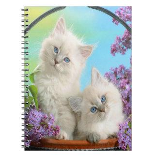 Cuaderno Gatitos lindos