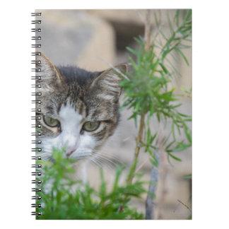 Cuaderno Gato lindo para cada día