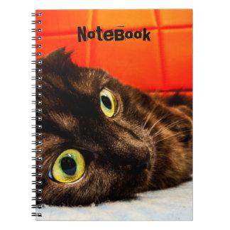 Cuaderno Gato negro del doblez del escocés