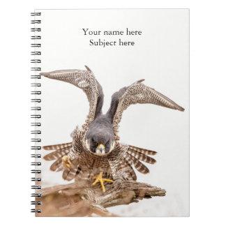 Cuaderno Halcón de peregrino