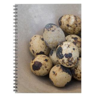 Cuaderno Huevos de codornices