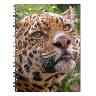 Cuaderno Jaguar inquisitivo