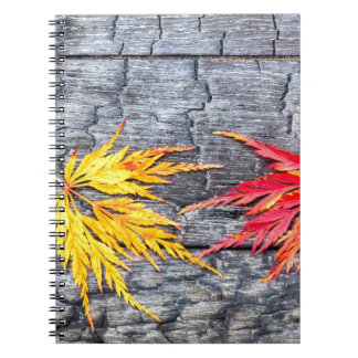 Cuaderno La hoja de arce amarilla y roja en negro quemó la
