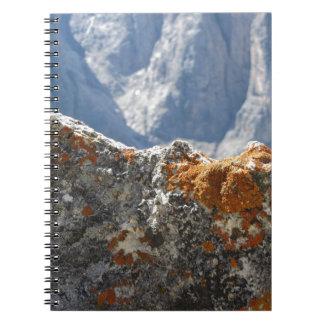 Cuaderno Liquenes anaranjados que crecen en cara de la roca