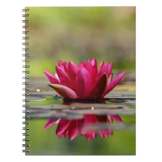 Cuaderno Lirios de agua