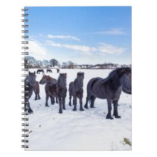 Cuaderno Manada de los caballos negros del frisian en nieve