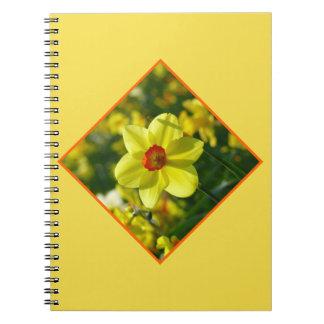 Cuaderno Narcisos amarillo-naranja 02.2.2o