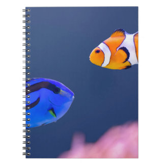Cuaderno Natación de los pescados del surgeonfish y del