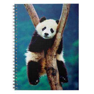 Cuaderno Oso de panda lindo