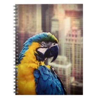 Cuaderno Pájaro en la ciudad