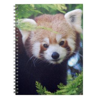 Cuaderno Panda roja