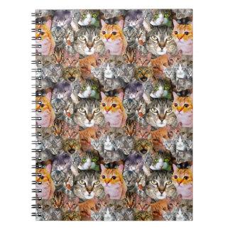 Cuaderno Pattern Cats