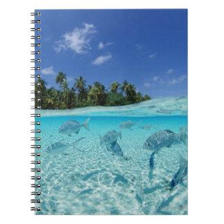 Cuaderno Pescados en el mar