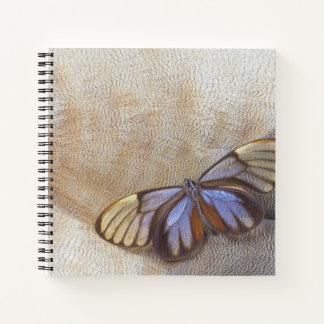 Cuaderno pluma egipcia del ganso de la mariposa del