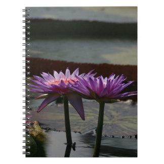 Cuaderno púrpura de Waterlilies Lotus