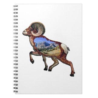 Cuaderno Roca y paseo