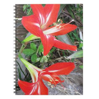 Cuaderno rojo de la foto del espiral del lirio