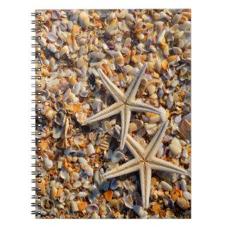 Cuaderno Seashells y estrellas de mar