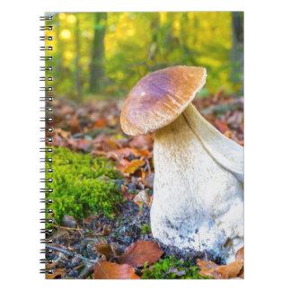 Cuaderno Seta comestible del porcini en piso del bosque en