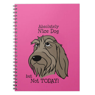 Cuaderno Spinone Nice dog