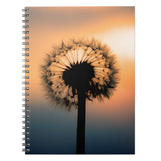 Cuaderno The Sunset and the Fragile Dandelion