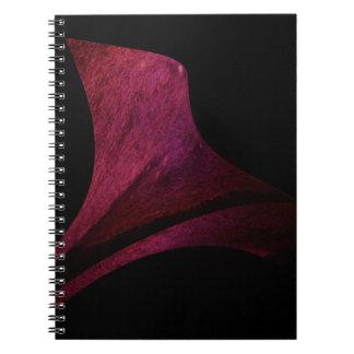 Cuaderno Tintas chinas sobre papel secante +i nfografía