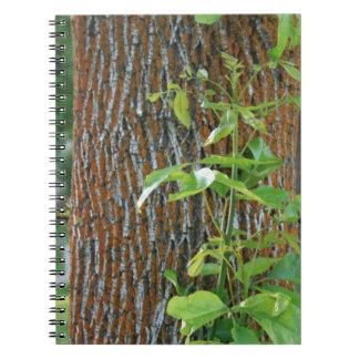Cuaderno Tronco con follaje